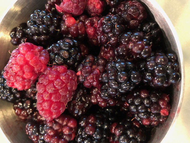 Fresh-picked berries