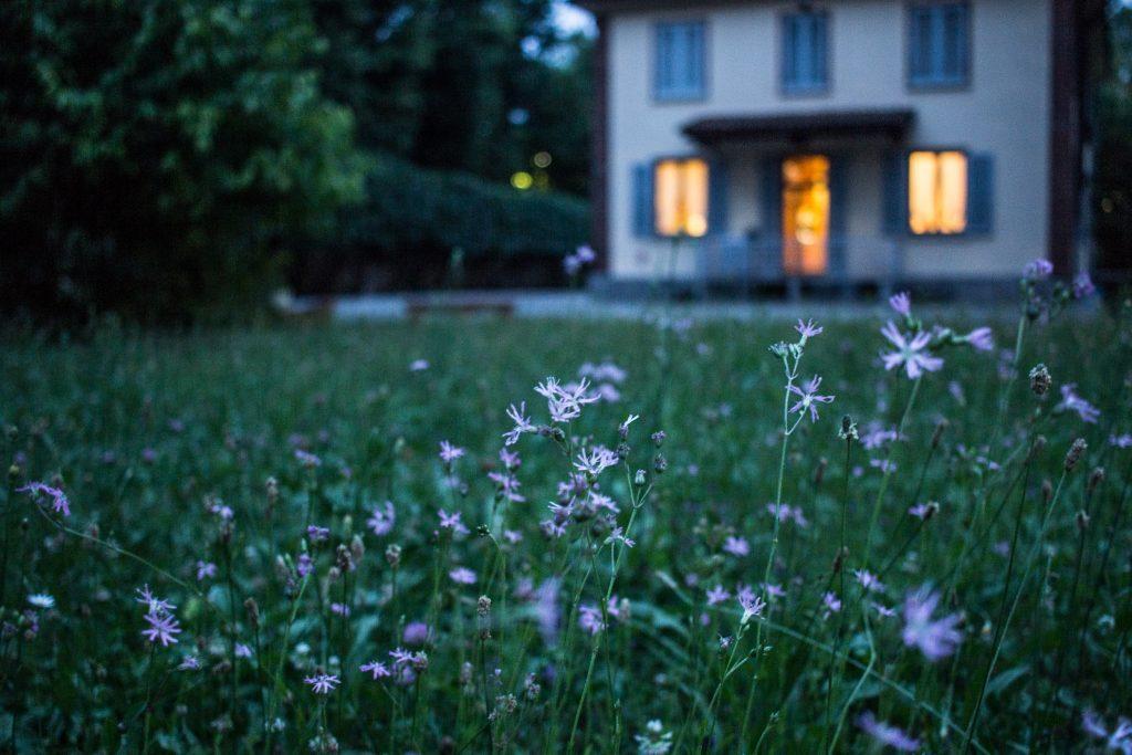 Non-toxic home - Photo by Valentina Locatelli on Unsplash